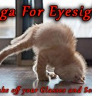 Yoga for the Eyes – Take Off Your Glasses and See