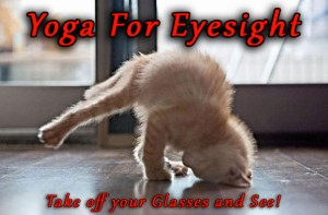Yoga Eye Exercises
